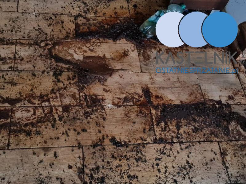 Sprzątanie mieszkania po zgonie zbieracza w Bieruniu